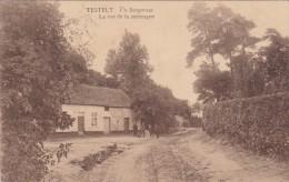 Testelt - De Bergstraat - Scherpenheuvel-Zichem