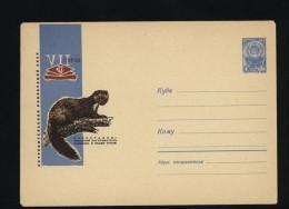 USSR 1966 Postal Cover Fauna Sable (208) - Autres