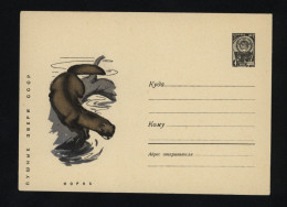 USSR 1967 Postal Cover Fauna Mink  (211) - Autres