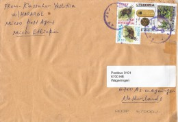 Ethiopia 2013 Mieso Postal Agent Beehive Honey Medicinal Plants Cover - Ethiopië