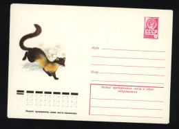 USSR 1979 Postal Cover Fauna Yellow-throated Marten (219) - Autres