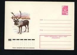 USSR 1979 Postal Cover Fauna Reindeer  (220) - Autres