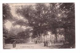 91 Foret De Senart  Chene Prieur Edit Mulard Cachet 1909 - Sénart