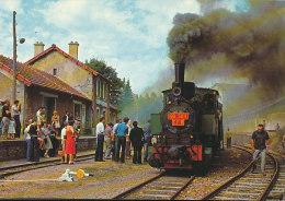 43 // TRAIN A VAPEUR   VELAY VIVARAIS      LA GALOCHE   A 491480  EDIT CELLARD  CPM - France