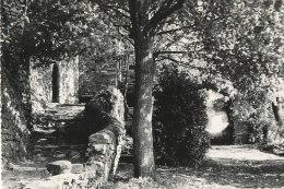 34 // PEZENES LES MINES    L'église Du Chateau - France