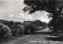 Toscana-grosseto-castiglione Della Pescaia Il Castello Veduta In Lontananza Anni/50 - Italia