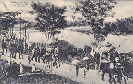 Asie - Singapour - Singapore - Malay Procession On Elephants - Singapour