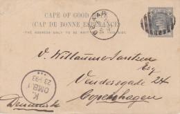 Cape Of Good Hope; Postal Card To Denmark 1893 - Afrique Du Sud (...-1961)