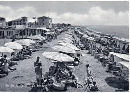 Toscana-livorno-marina Di Cecina La Spiaggia Veduta Animatissima Anni 50/60 - Italia