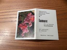 """Calendrier 1965 """"Maroquirerie Lamure VILLEFRANCHE (69) / Photo Gorne (fleur)"""" (9,5x13cm) - Petit Format : 1961-70"""