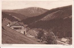 AK Gross-Aupa - Velká Úpa - Im Riesengebirge - Villa Zehl Und Pensionat  (21741) - Czech Republic