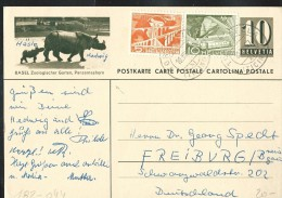 Suisse : Entier N° 182-044 Obl 10/081957  Zoo De Bâle-Bazel - Rhinocéros