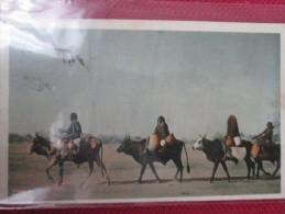 LES BOEUFS PORTEURS DU TCHAD . 2 CARTES . CACHET DEPART DAHOMEY . BEAUX TIMBRES - Tchad