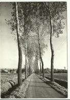 Ruddervoorde - Landelijkeweg - Sijslo - Oostkamp