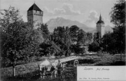 LUZERN / ATTELAGE  / TTBE    /  LOT 1511 - LU Lucerne