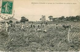 Cpa MARTINIQUE - Habitation Coloniale Et Groupe De Travailleurs De Cannes à Sucre ( Moulin En Ruines, Beauséjour ? ) - Martinique