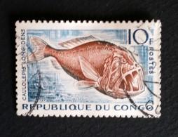 TIMBRE Congo N° 147 De 1961- Caulolepis Longidens 10f., Gris-bleu Et Brun-lilas - OBLITERE - Kongo - Brazzaville