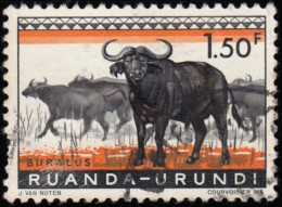 RUANDA-URUNDI - Scott #142 Syncerus Caffer / Used Stamp - Ruanda-Urundi