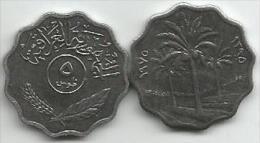 Iraq 5 Fils 1975. - Iraq