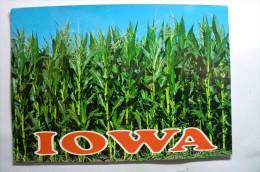 Iowa - The Tall Corn State - Etats-Unis