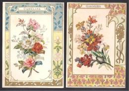 Lot De 2 Chromos Fleurs Encadrement Style Art Nouveau ( Format 135 X 93 Mm ) - Trade Cards