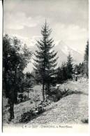 CHAMONIX (74)  - Chemin Avec Le Mt Blanc - Chamonix-Mont-Blanc
