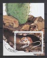 Somaliland 2001°, Kakteen, Vignette / Somaliland 2001, Cancelled,  Cacti, Cinderella - Fantasie Vignetten