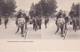 POSTAL DE JARDIN DE ACLIMATACION- PROMENADE SUR L'ELEPHANT (ELEFANTE-ELEPHANT) - Elefantes