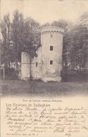 Sotteghem (Environs De) - Tour De L'ancien Château D'Herzele (précurseur 1902) - Lebbeke
