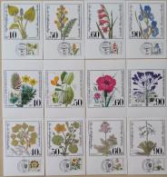 2016-0276 3 Complete Maximumcard Sets Plants (1 Set Berlin, 2 Sets FRG) - Pflanzen Und Botanik
