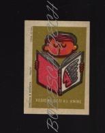 19-044 CZECHOSLOVAKIA 1966 Children's Book, Indian Livre Pour Enfants, Indien Libro Para Niños, Indio - Boites D'allumettes - Etiquettes
