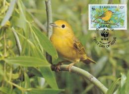 WWF - 107,31 - CM-MC - € 1,20 - 4-3-1991 - 10c - Yellow Warbler - Barbados 1110212 - Barbades (1966-...)