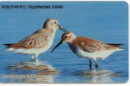Oiseau Bird Vogel Télécarte Telefonkarten Phonecard  J 718 - Corée Du Sud