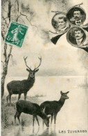 CHASSE A COURRE(VENERIE) - Chasse