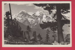 204128 / Pirin Mountain Pirin-Gebirge - PEAK Vihren Wichren ( El Tepe  2914 M) PEAK Kutelo  , Bulgaria Bulgarie - Bulgaria