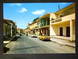 CAMPANIA -BENEVENTO -TELESE -F.G. LOTTO N°509 - Benevento