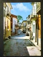 CAMPANIA -BENEVENTO -SAN LEUCIO DEL SANNIO -F.G. LOTTO N°509 - Benevento