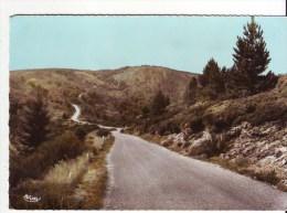 Cpm Cpsm  Lamalou  Route De L'espinouze - Lamalou Les Bains