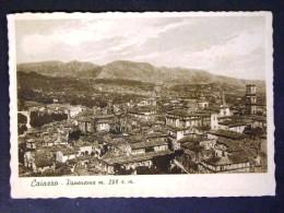 CAMPANIA -BENEVENTO -CAIAZZO -F.G. LOTTO N°509 - Benevento