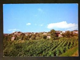 CAMPANIA -BENEVENTO -CIRCELLO -F.G. LOTTO N°509 - Benevento