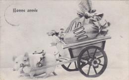Varken Varkens Cochon Cochons  Pig Swine Zwijn Zwijnen Bonne Annee Nieuwjaar New Year - Cerdos