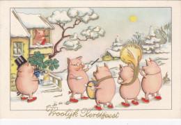 Varken Varkens Cochon Cochons  Pig Swine Zwijn Zwijnen Kerstfeest Muziek Musicians Drum Tuba Navidad Christmas Kerstmis - Cerdos