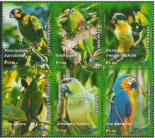 Peru / Birds / Parrots - Peru
