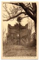 Cpa    Beauvoir En Royans  Les Ruines Du Donjon  ( Ancienne Résidence Des Dauphins En 1349 )     TBE - France