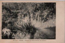 CILAOS - Chemin Des Bains (Sentiers Des Dames) - La Réunion
