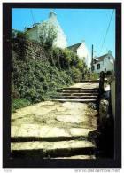 56  ILE Aux MOINES    La Rue Des Escaliers - Ile Aux Moines