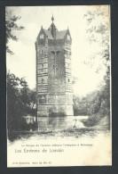 CPA - Environs De Louvain - ROTSELAAR - Donjon De L'ancien Château Terheyden à ROTSELAER - Nels Série 36 N° 43   // - Rotselaar