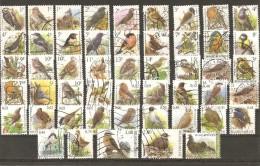 Belgique - Petit Lot De 50 Oiseaux - Buzin - Timbres Différents Oblitérés - Oiseaux
