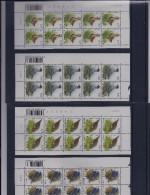 Belgie - Belgique 3266/69 Velletje Van 10 Postfris - Feuillet De 10 Timbres Neufs - Vogels - A. Buzin - Feuilles Complètes