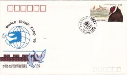 CHINE @ FDC De 1989 - Faisan Paon ? Oiseau Crossoptilon Mantchuricum - 1949 - ... People's Republic